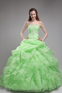 Light Green Strapless Ball Gown Organza Quinceanera Dress with Beading and Ruffles