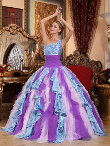 One-shoulder Ball Gown Multi-colored Quinceanera Dress with Zebra on Promotion