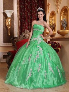 Ruched Strapless Spring Green Organza Quinceanera Dress with Appliques for Cheap