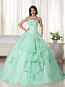 Apple Green Long Organza Magnificent Quinceanera Gown with Embroidery