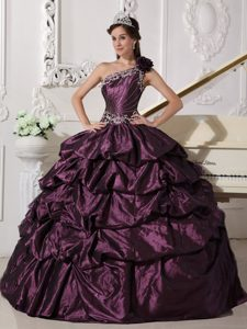 One Shoulder Taffeta Appliqued Purple Quinceanera Dress with Pick-ups
