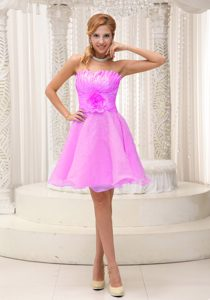 Gorgeous Ruched and Beaded Zipper-up Pink Organza Dresses for Damas
