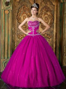 Elegant Fuchsia Princess Sweetheart Quinceanera Dresses in Tulle
