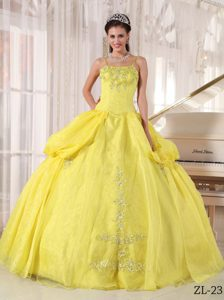 Cute Spaghetti Straps Taffeta Yellow Appliques Quinceanera Dress