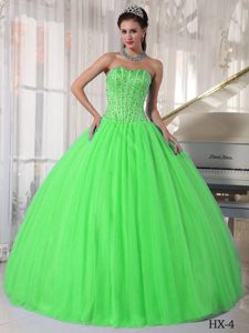 Spring Green Floor-length Sweetheart Beading Sweet 16 Dresses 2014