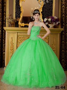 Strapless Organza Beading Spring Green Quincenera Dresses in 2014