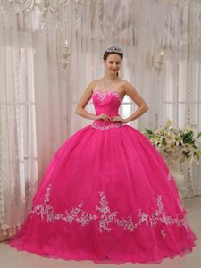 Hot Pink Sweetheart Taffeta and Organza Appliques Sweet 16 Dresses in 2013