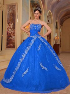 Sweetheart Floor-length Organza Dress for Quince with Embroidery in Sky Blue