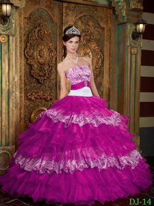 Fuchsia Organza and Zebra Quinceanera Dresses with Ruffles on Promotion