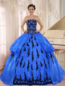 Blue 2013 New Arrival Strapless Quinceanera Dress with Embroidery in 2014