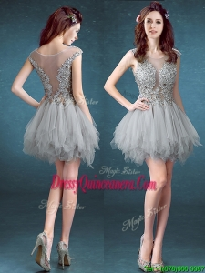 Gorgeous Scoop Appliques and Ruffles Dama Dress in Grey