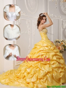 New Style Court Train Quinceanera Dresses with Pick Ups and Appliques