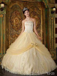 Champagne Strapless Tulle Sweet 15 Dress with Appliques and Handle Flower