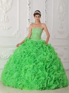 Strapless Cute Green Beaded Organza Sweet 16 Dresses with Ruffles