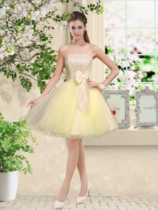 Amazing Light Yellow Sleeveless Organza Lace Up Dama Dress for Prom and Party