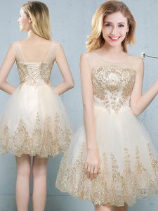 Champagne Scoop Lace Up Appliques Damas Dress Sleeveless