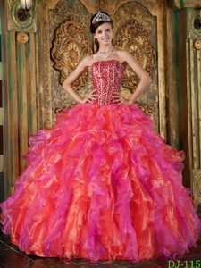 Multicolor Strapless Organza Beaded and Ruffled Quinceanera Dress in 2013