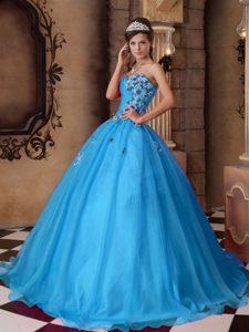 Aqua Blue Sweetheart Organza Beaded Quinceanera Dresses with Appliques