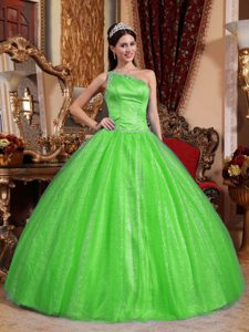 Spring Green One-shoulder Ball Gown Quinceanera Dress with Beading on Promotion