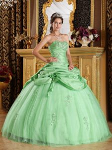 2013 Apple Green Tulle Beaded Quinceanera Dress with Hand Made Flowers
