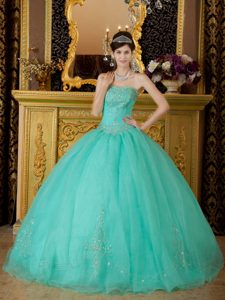 Turquoise Beading Appliques Strapless Organza Quinceanera Gown Dress