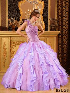 Ball Gown One Shoulder Ruffled 2013 Sweet Sixteen Dresses in Organza