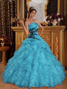 Aqua Blue Sweet Sixteen Quinceanera Dresses with Appliques in Organza