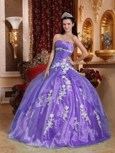 Beautiful Strapless Organza Quinceanera Dress with Appliques on Promotion