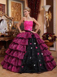 Customize Strapless Organza Appliques Quinceanera Dresses in Multi-color