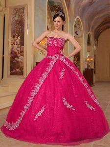 Fabulous Embroidered Hot Pink Organza Quinceanera Dresses for Spring