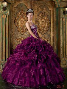 Luxurious Long Strapless Ruffled Organza Sweet Sixteen Dress in Purple