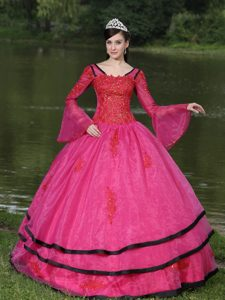 Newest Hot Pink Long Sleeves Ball Gown Organza Quinceanera Dress with Appliques