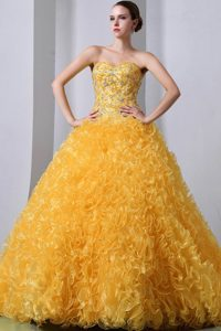 Sweetheart Brush Train Organza Quinces Dresses for Wholesale Price