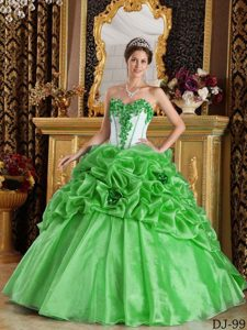 2013 Spring Green Sweetheart Flowers Organza Quinceanera Gown Dresses