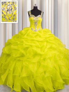 Perfect See Through Zipper Up Sleeveless Appliques and Ruffles Zipper Quinceanera Dress