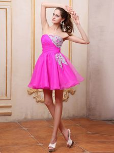 Strapless Fuchsia Appliqued Organza Short Sweet Damas Dress for Quince