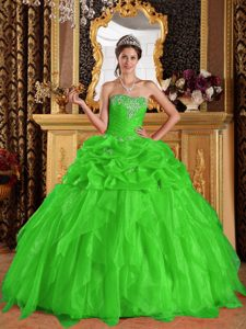 Appliqued Organza Nice Beaded Quinceanera Gowns in Spring Green