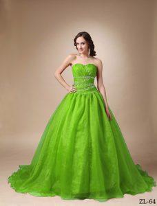 Chapel Train Taffeta Princess Sweetheart Ruche Sweet 16 Dresses
