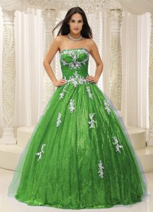 2014 Wonderful Green Sequin and Tulle Strapless Quinceanera Dress with Appliques